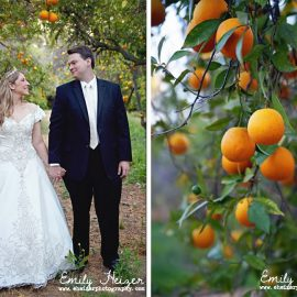 California Citrus State Historic Park Wedding